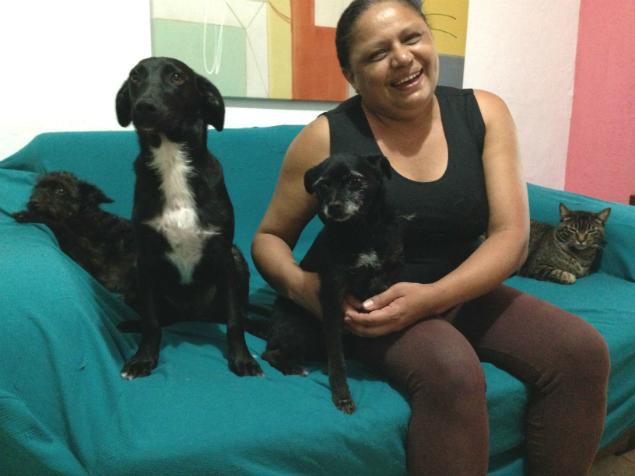 Maria Reginelda Rock de Souza, protetora de animais independente, vive com cães e gatos recolhidos da rua